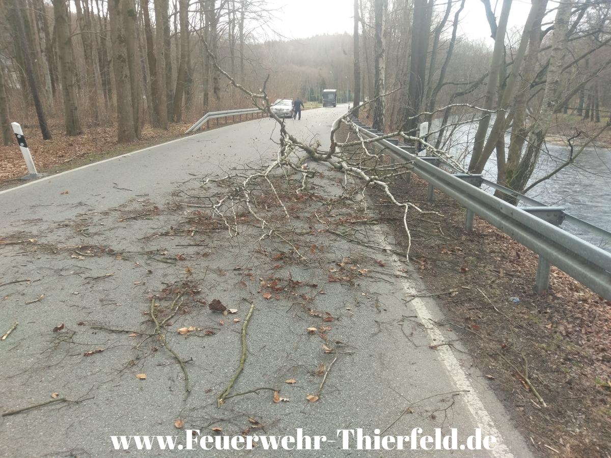 Einsatz 7:  THL1 Baum auf Straße