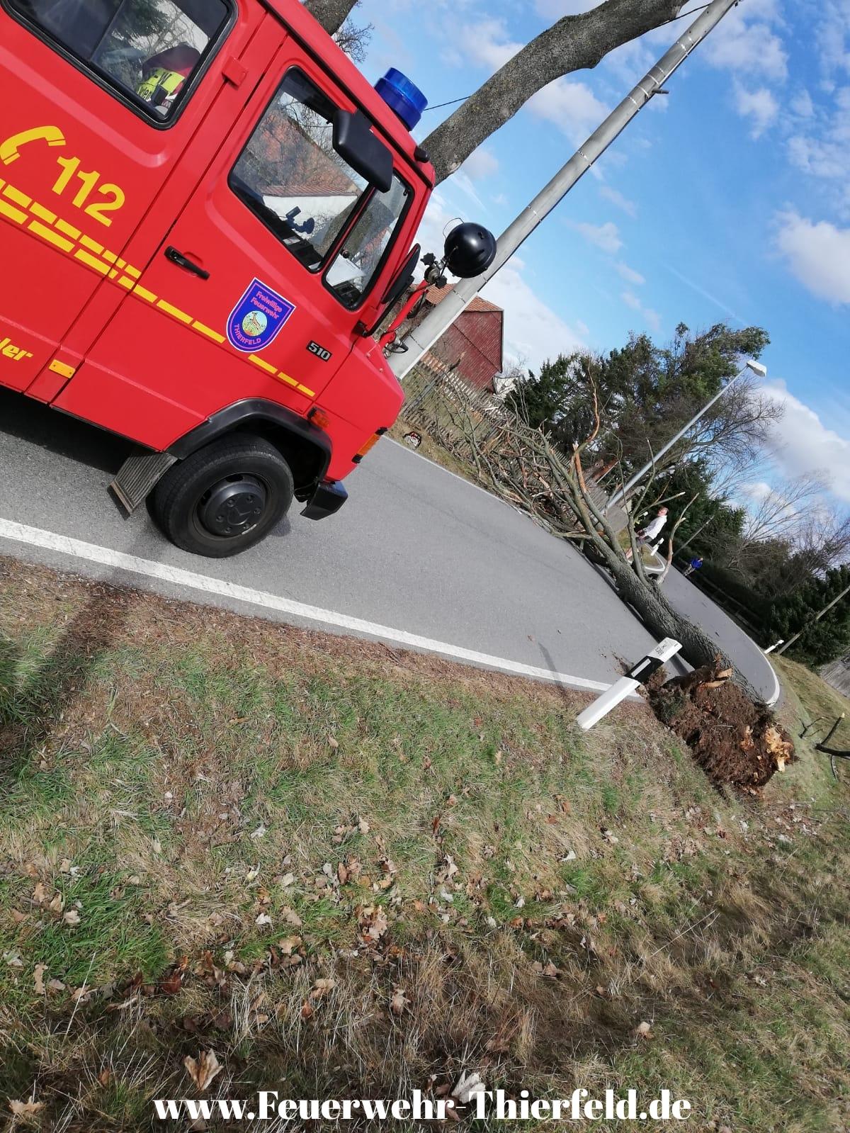 Einsatz 9:  THL1 Baum auf Straße