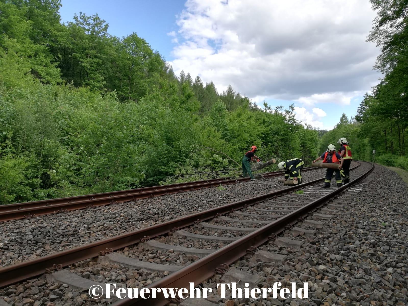 Einsatz 9/2020: THL1 – Baum droht auf Gleise zu fallen.